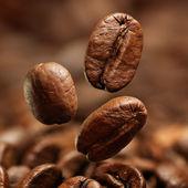 closeup kávová zrna