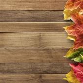 autunno sfondo