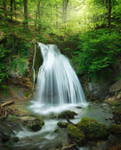 Fotografie lesní vodopád