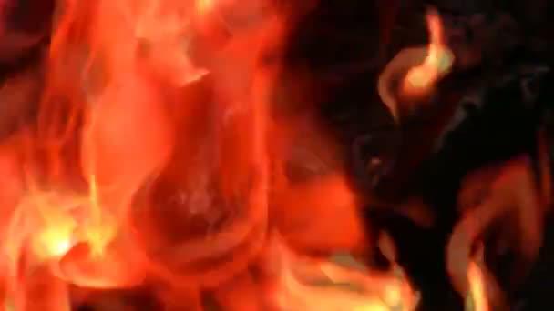 plamen grilování 2
