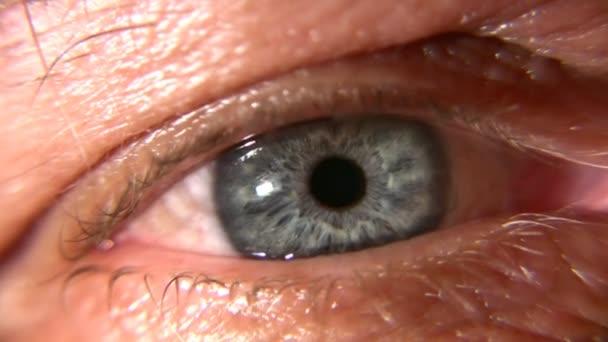 Senior eye macro