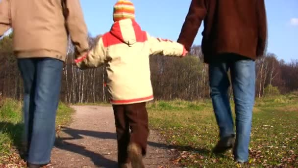Son, father and grandfather walking in park