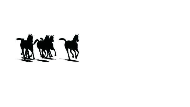 A futó lovak állomány jön közelebb és tartja távol