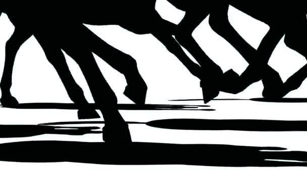 Detailní záběr nohama stáda běžící koně, černá silueta na bílém pozadí