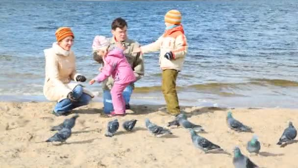 Family on beach and feeds pigeons
