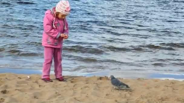 Girl feeds pigeons on beach