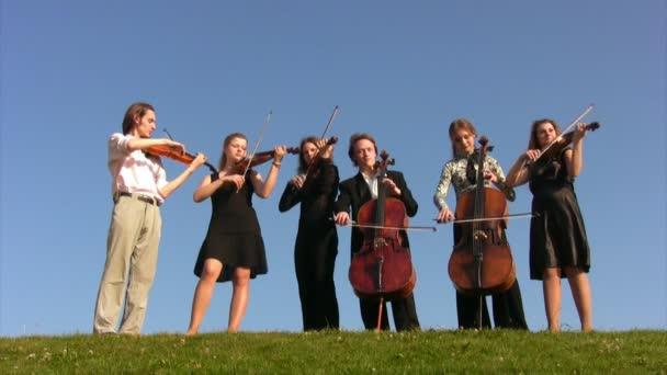 A rét hat zenész játszik vonós hangszerek