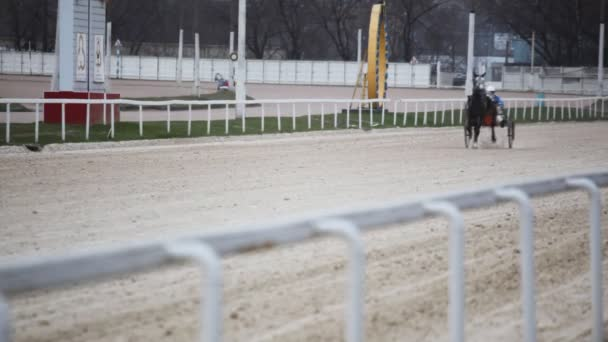 Shooting of vehicle with running horse and jockey slowly running on track