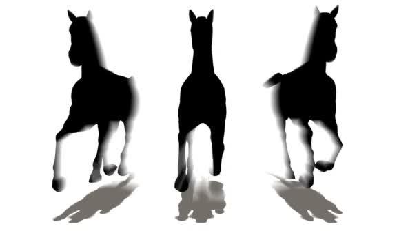 tři koně
