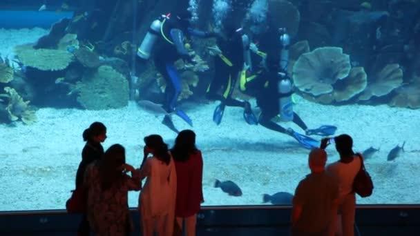 Některé blízko akvárium s potápěči v Dubaji v Dubaji, Spojené arabské emiráty