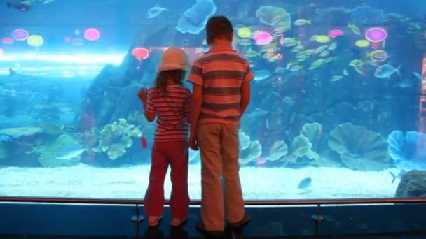 dvě děti v akváriu s sebou
