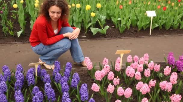 žena sedí, při pohledu na krásné hyacinty