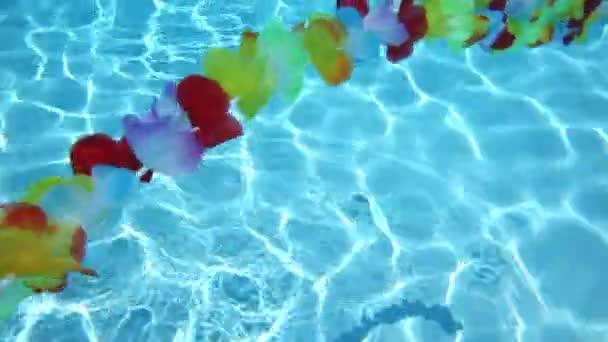 Egyetlen sor Hawaii virágok úszó medence víz