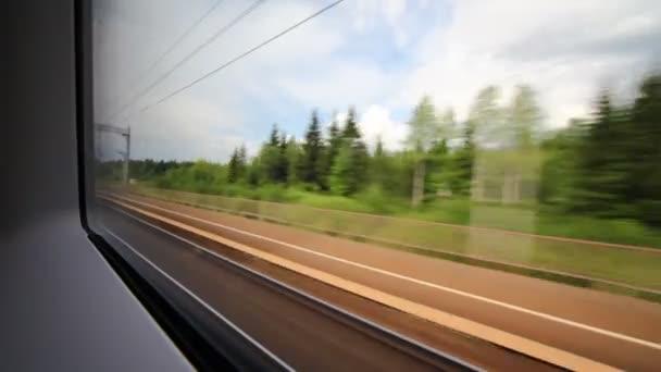 pohled na dřevo a prostředí z okna rychle probíhající vlaku