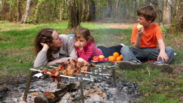 rodina ležela na trávě se vztahuje pléd, kebab na oheň v popředí