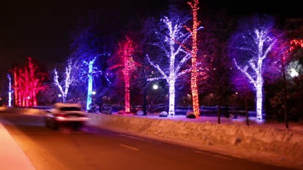 gli alberi sono decorati con ghirlande stand lungo la strada su cui veicoli viaggiano via