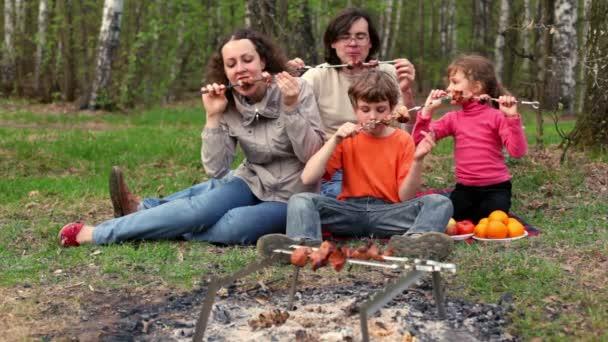 rodina sedět na trávě kryt pléd a sní kebab na špejle