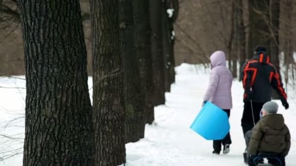 i genitori e i loro figli su slitta a piedi di vicolo del parco