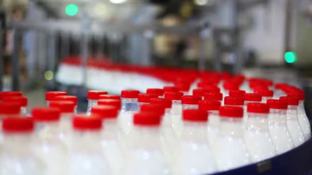Many bottles of milk move conveyor and go to defocusing