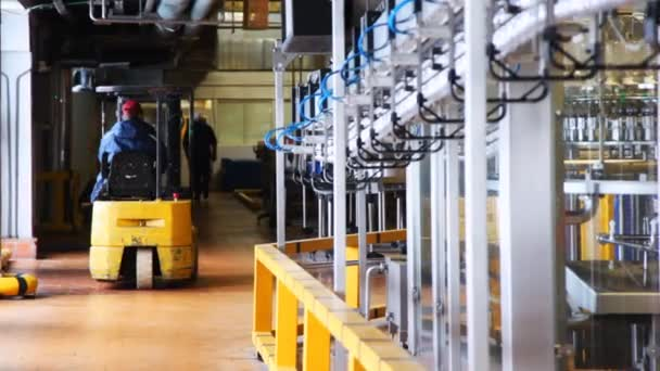 Small forklift goes near conveyor inside dairy factory