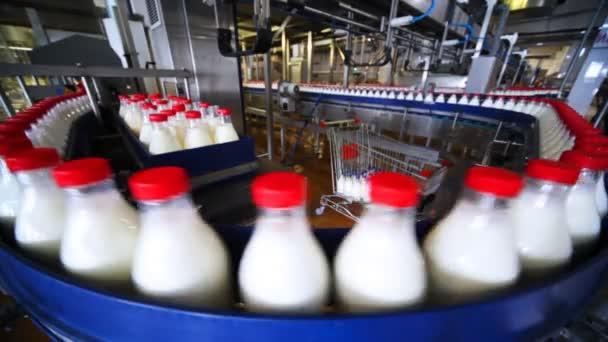 viele Flaschen Milch bewegen sich in Reihe auf dem Band in der Fabrik