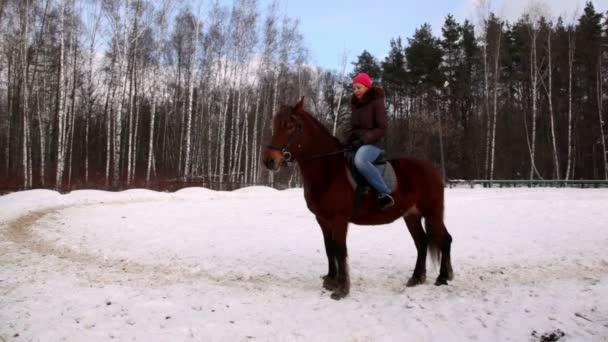 žena sedí na koni v lese