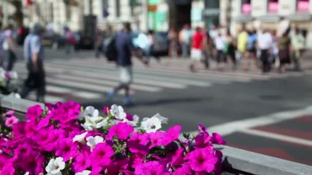 Lot of people walk by pedestrian crossroad, focus on flowers