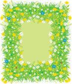 Fotografie hranice oblasti květin a trávy