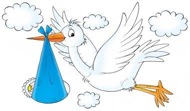 flying white stork bird