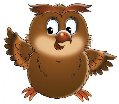 Chubby brown owl
