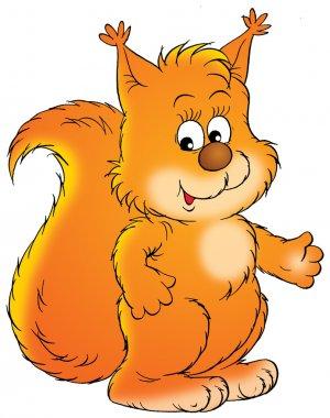 Cute orange squirrel