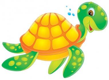 Sea turtle swimming past