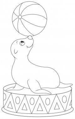 Seal balancing a big ball in a circus performance, black and white outline vector illustration for a coloring book stock vector