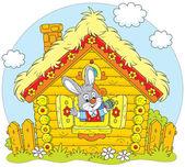 Fotografie Easter Bunny