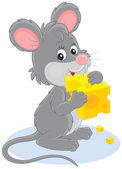 Fotografie Maus und Käse