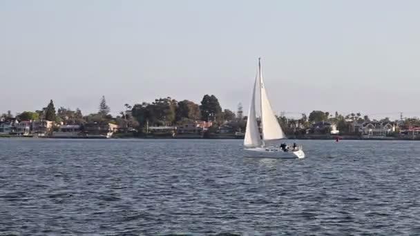 plachetnice v zátoce
