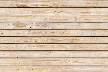 Pine seamless texture