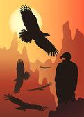 Fotografia uccelli selvatici nella natura selvaggia