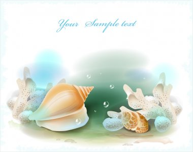 Background with seashells and corals