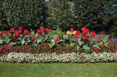 Magnificent decorative park on Izola Bella