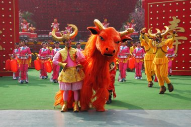 The dance ensemble in dazzling costumes