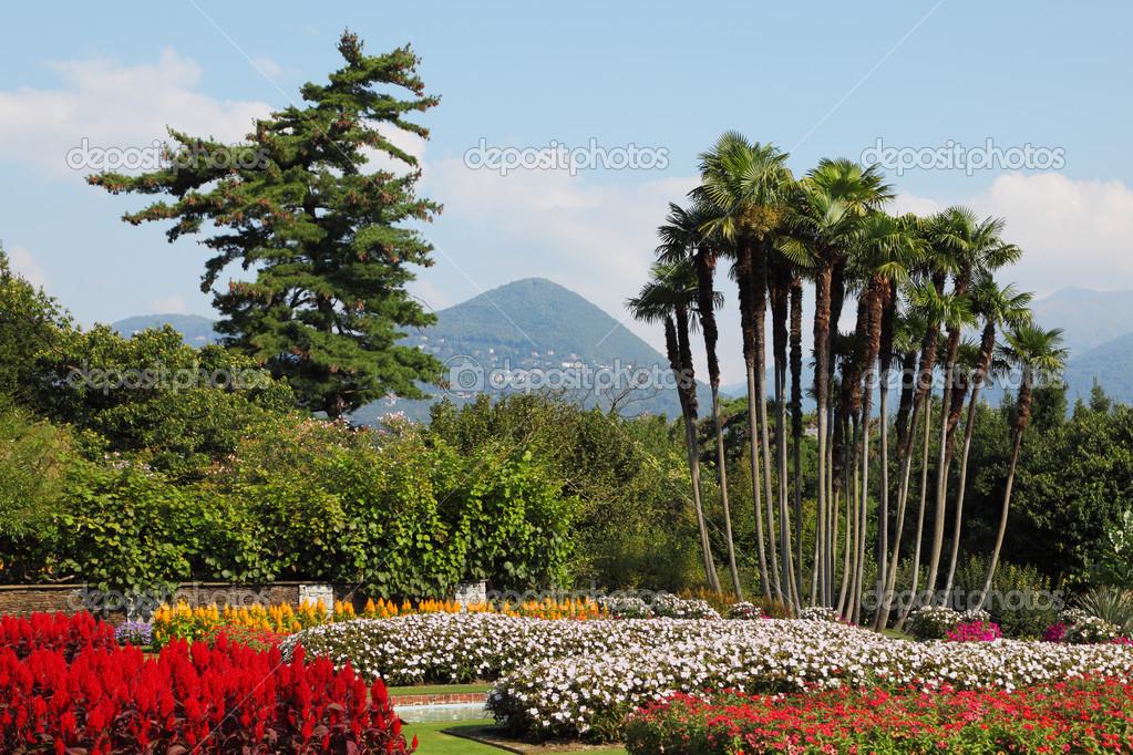 Park Villa Taranto, die Blumen und Palmen — Stockfoto © kavramm ...