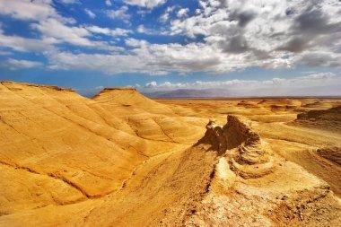 Yellow desert.
