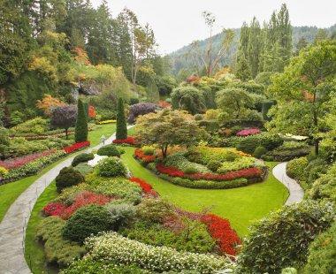 The Sunken-garden on island Vancouver
