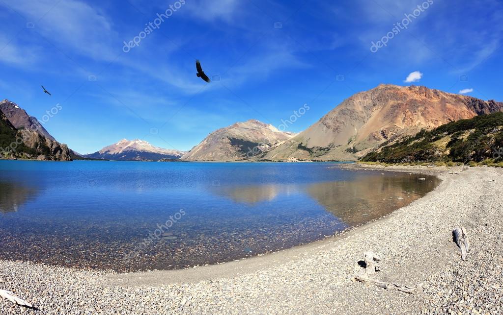Predatory condors turns over the lake