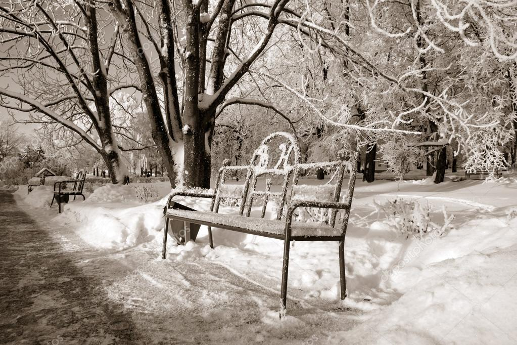 bench in winter park, sepia