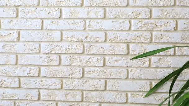 orchidej (cymbidium) na pozadí ozdobnou cihlovou zeď