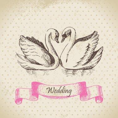 Swans. Wedding hand drawn illustration