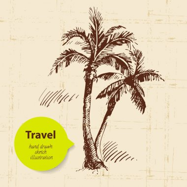 Vintage travel background with palms. Hand drawn illustration