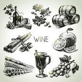Fotografie von Hand gezeichneten Vektor Wein set